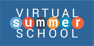 Virtual Summer School